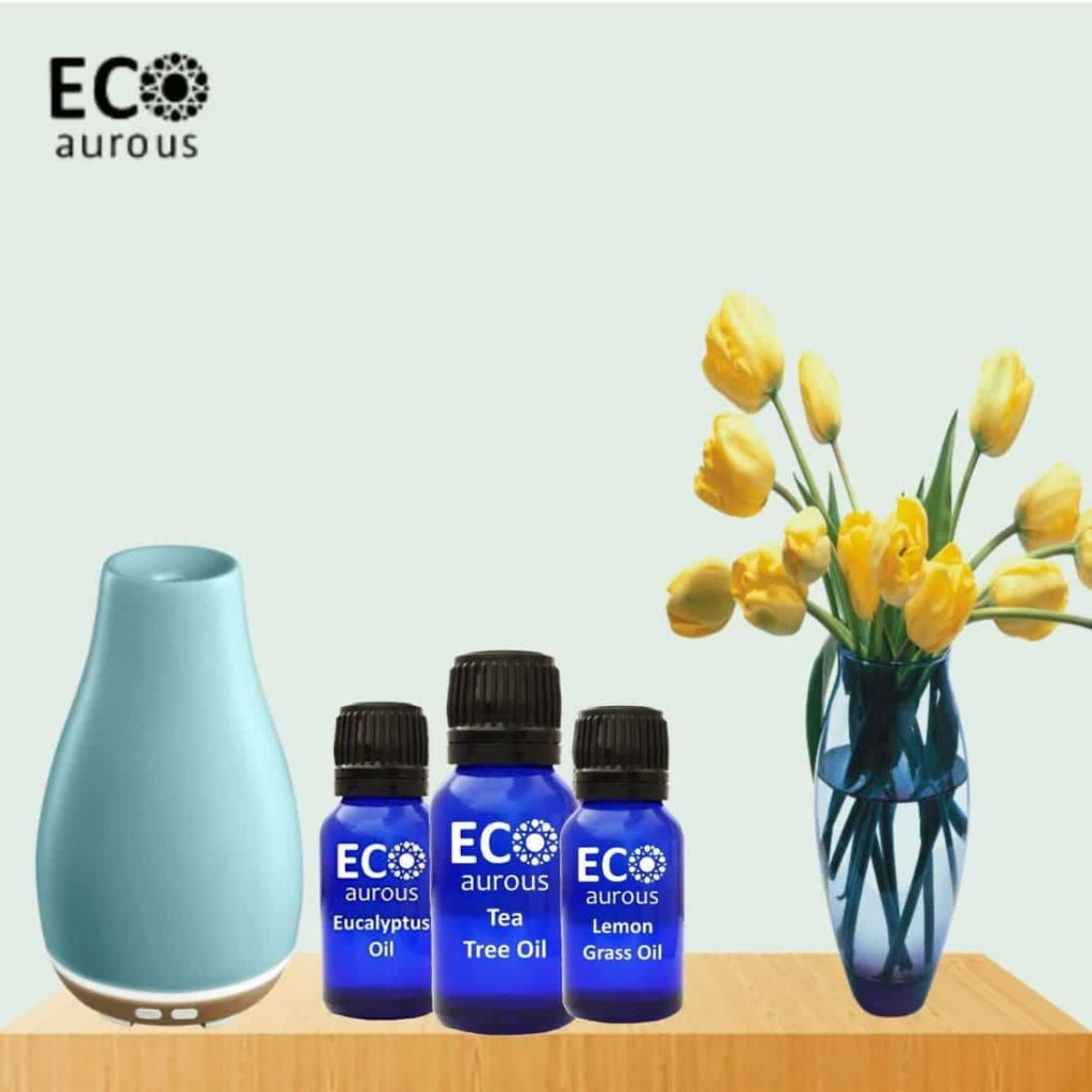 Buy Winter Essential Oils Set For Diffuser, Massage and Skin Online By Eco Aurous - Eco Aurous