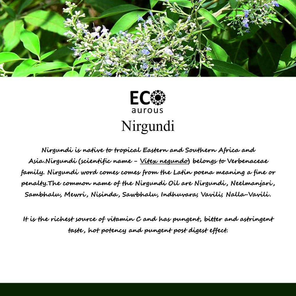 Buy Nirgundi Essential Oil 100% Natural & Organic For Pain Online - Eco Aurous