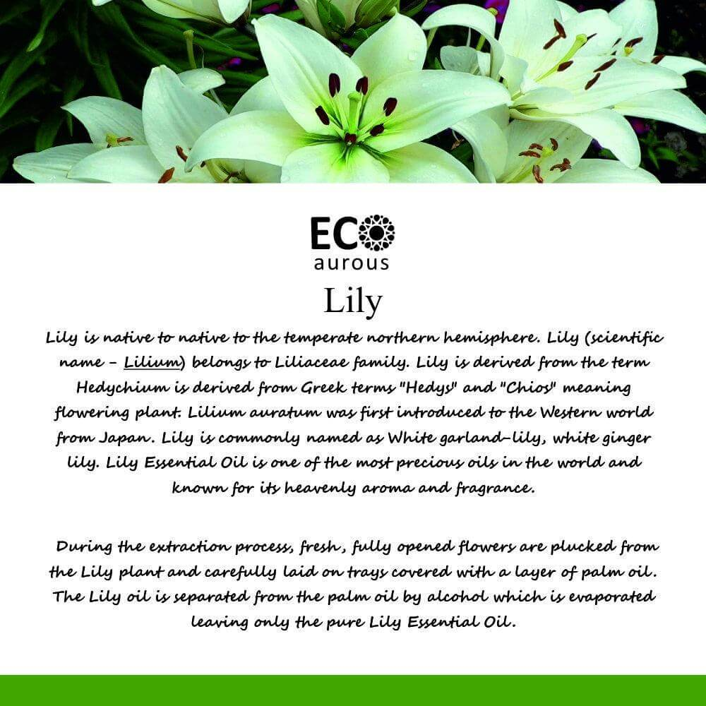 Buy Lily Essential Oil 100% Natural & Organic For Aroma Therapy Online - Eco Aurous