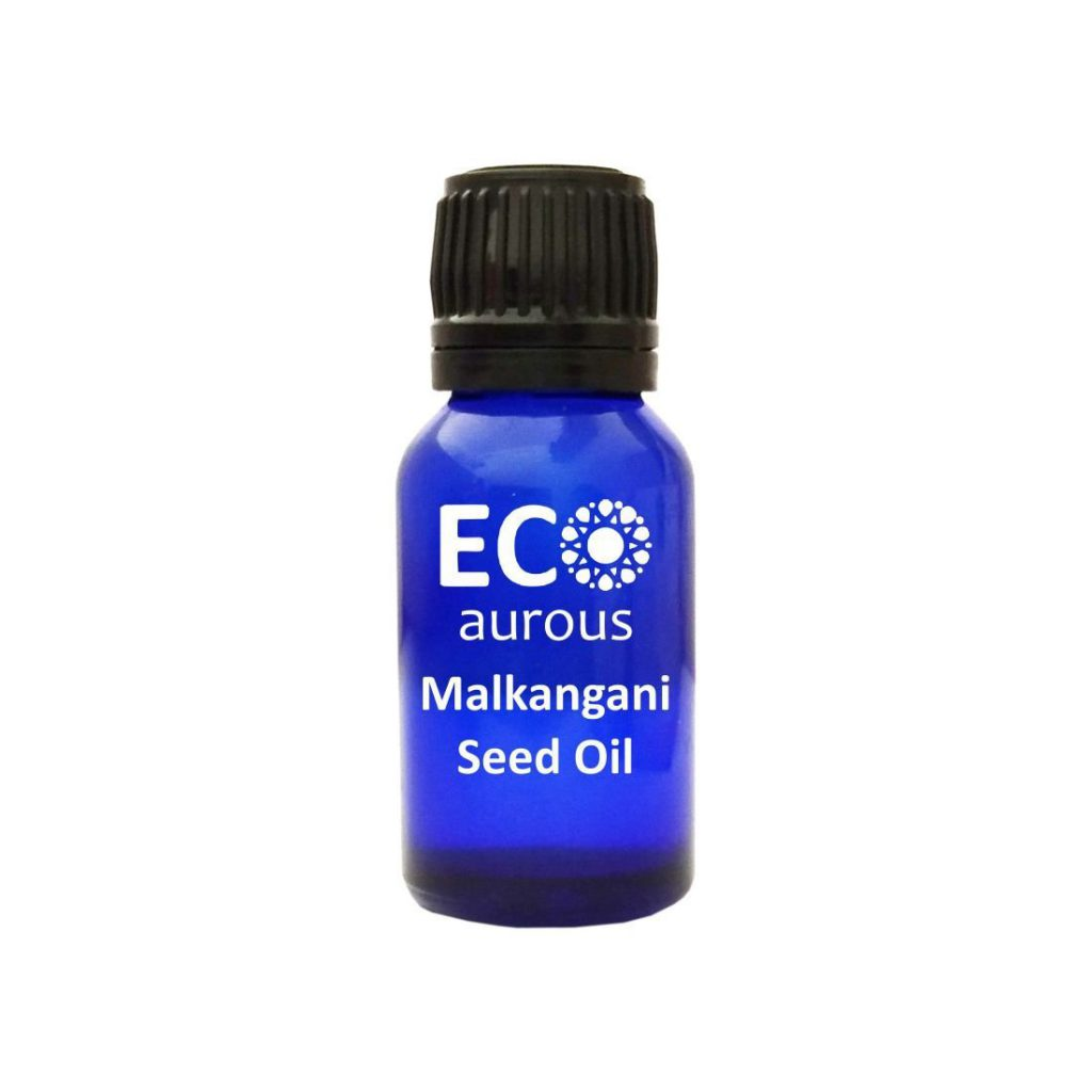 Buy Organic Celastrus Paniculatus Oil 100% Natural Malkangni Seed Oil Online - Eco Aurous