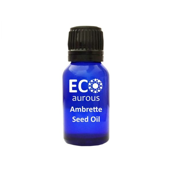Buy Ambrette Seed Oil 100% Natural & Organic Ambrette Seed Essential Oil Online By Eco aurous - Eco Aurous