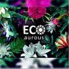 Eco Aurous Ketotosc Anti Fungal & Antibacterial Body Wash - 300 ML
